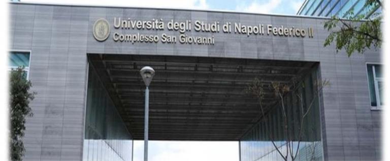XV SIIV Summer School I-BIM – Napoli 5-8/09/2017